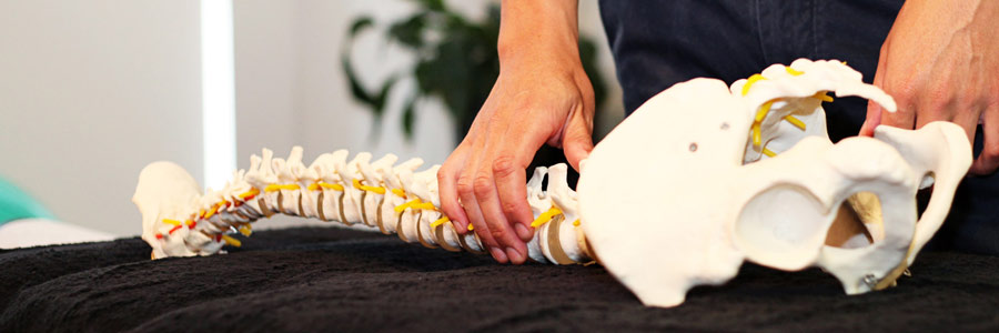 Chiropractic Neck & Back Pain Treatments