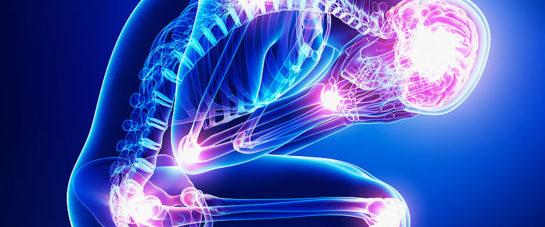 Image 4 - Chronic pain chiropractor balmain