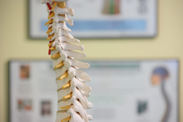 spinal stiffness management treatment conservative care symptoms emergency red flag stiffness chiro chiropractor chiropractic sportschiro physio physiotherapist physiotherapy sportsphysio osteo osteopathy osteopath sportsosteo Balmain balmainchiro balmainphysio balmainosteo sydneyspineandsportscentre s3c inner west sydney